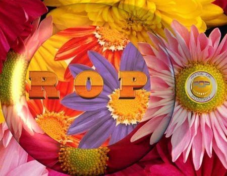 La cultura hippie e il suo retaggio