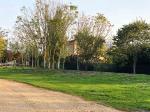 Parco Ottocento
